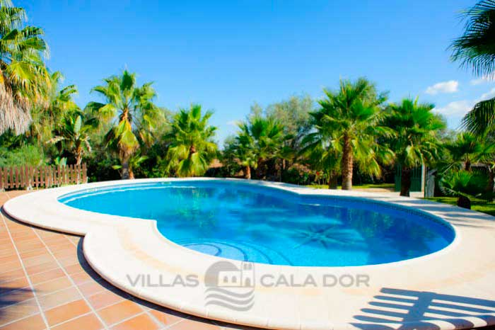 Countryside villa with pool in Mallorca - Andaluza